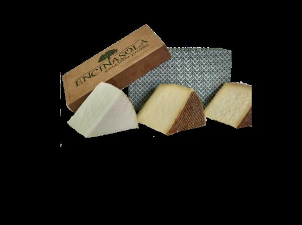 pack degustacion quesos encinasola oveja